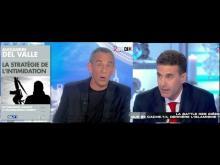 Islamisme : Clash entre Alexandre Del Valle et Edwy Plenel (Salut les Terriens - C8)